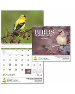 Good Value Birds of North America Calendar Spiral